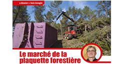 Le marché de la plaquette forestière porté par les coopératives
