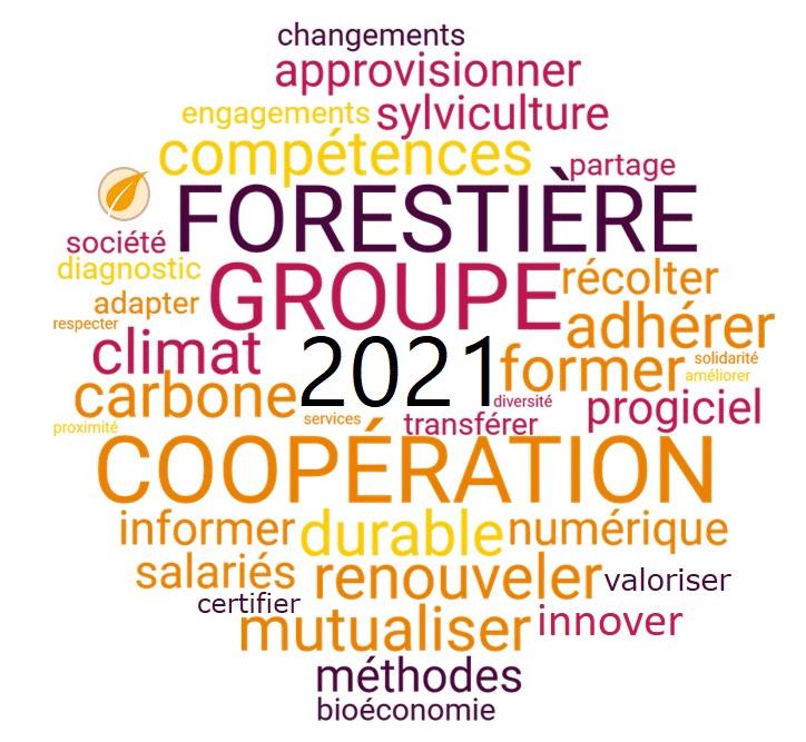 GCF vous souhaite une bonne année 2021